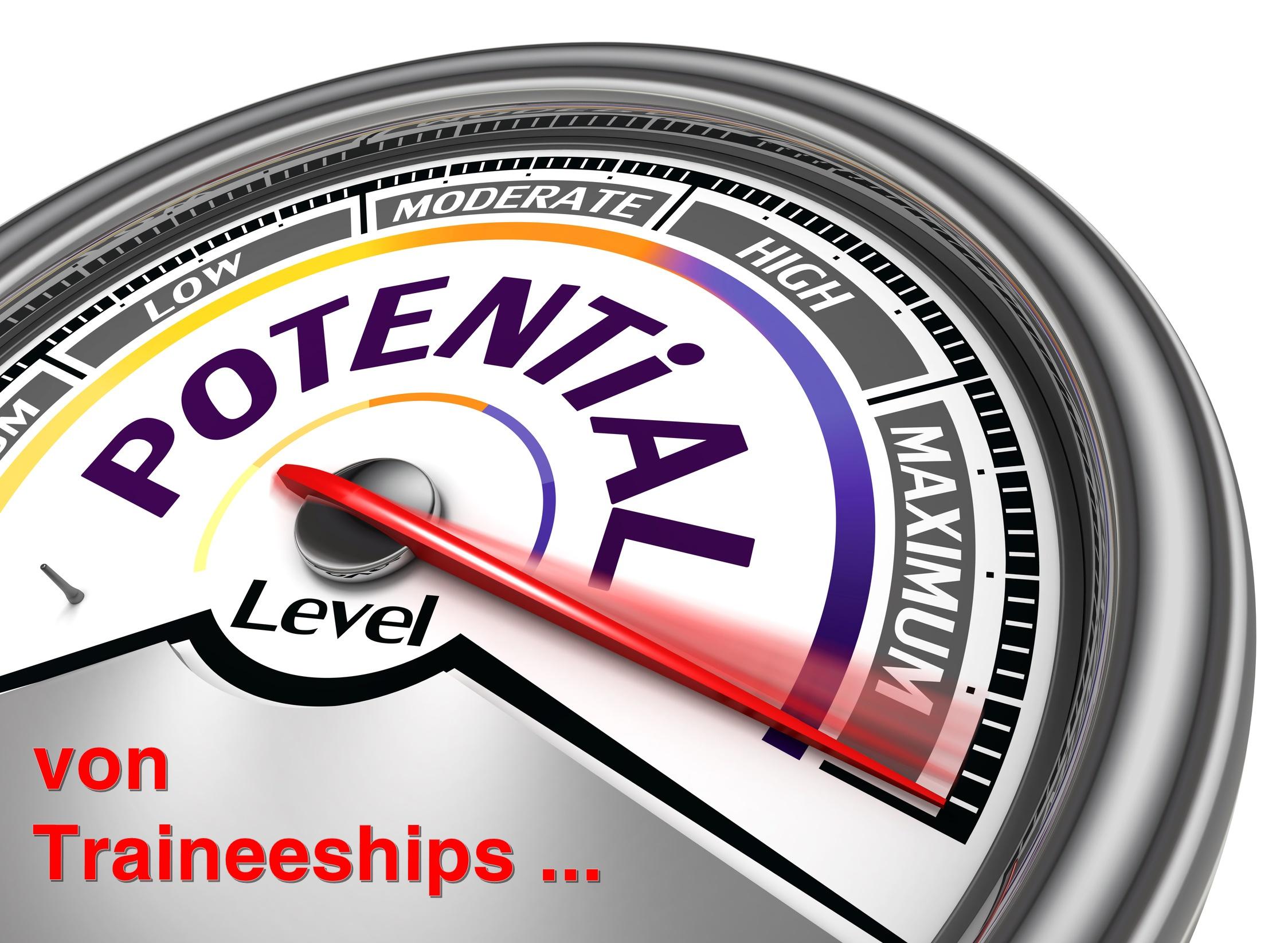 Potenzialeinschätzung für Traineeships